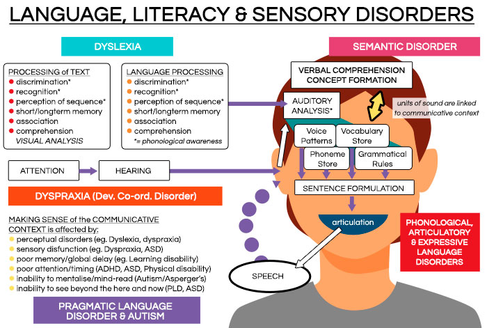 Language, Literacy & Sensory Disorders